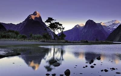 Milford Sound is a must-do on every Queenstown itinerary.